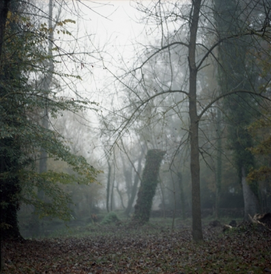 http://www.albadanes.com/files/gimgs/35_35sin-titulo-3.jpg